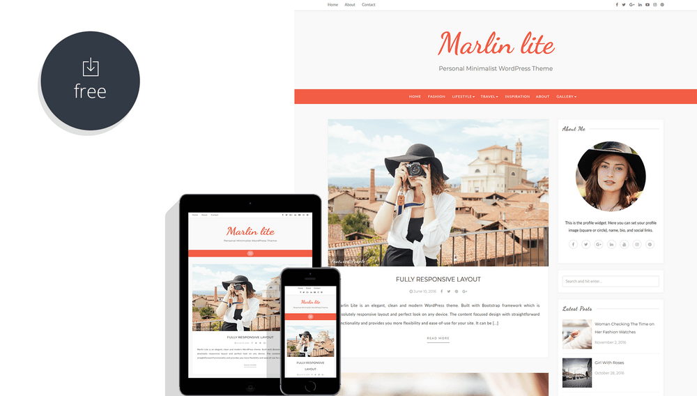 Marlin lite - Personal Minimalist WordPress Theme
