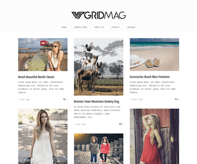 VT Grid Mag - Free WordPress Theme