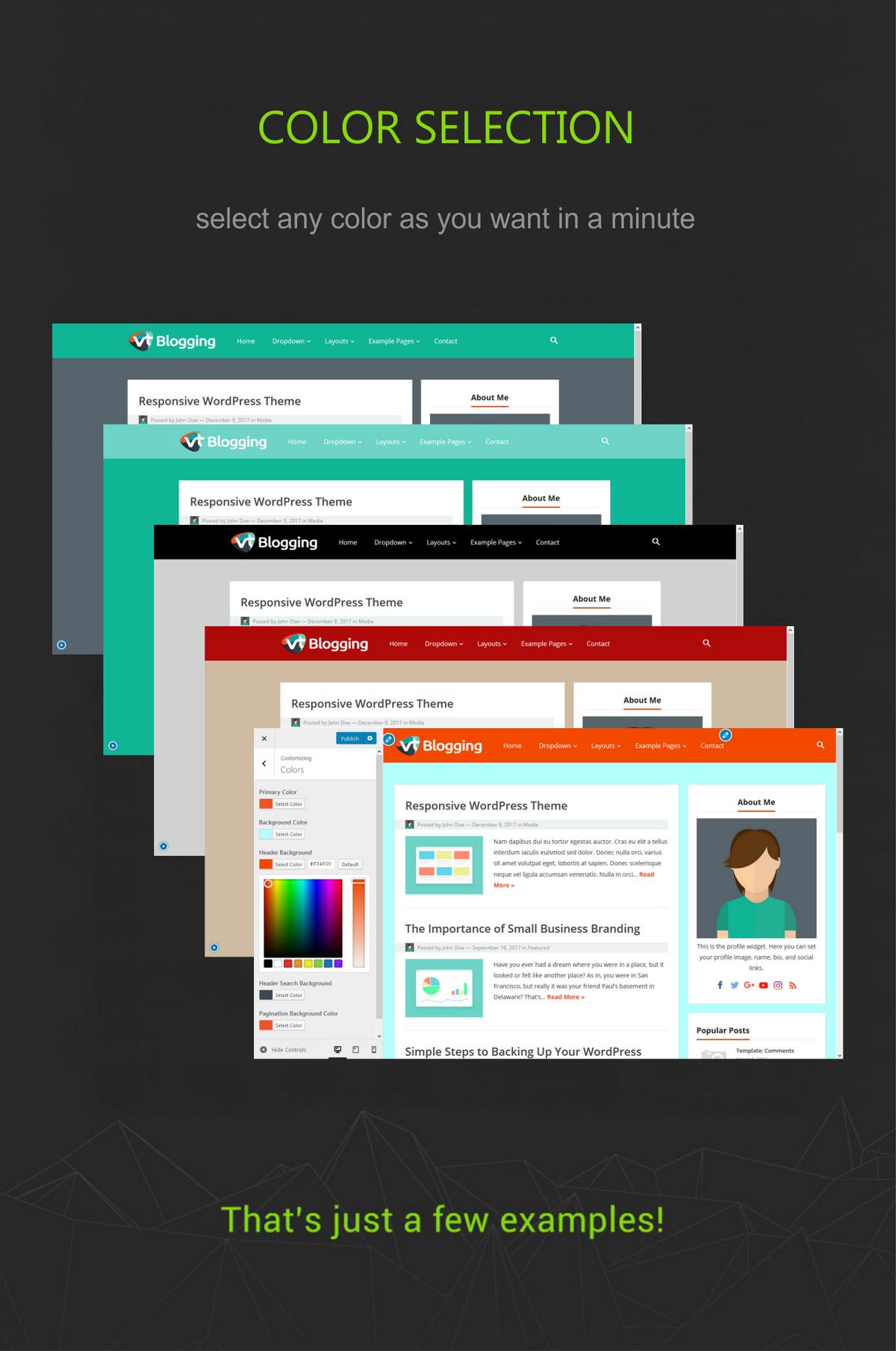 VT Blogging Color Selection